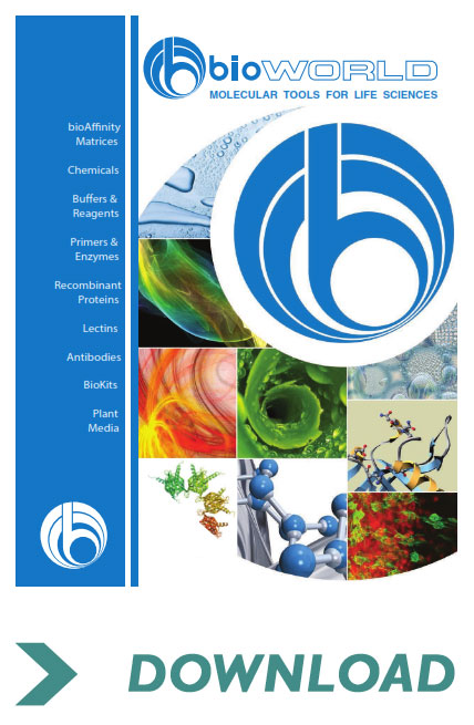 bioWord product catalogue download link